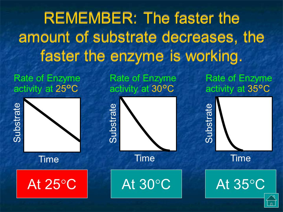 REMEMBER: The faster the amount of substrate decreases, the faster the enzyme is working.