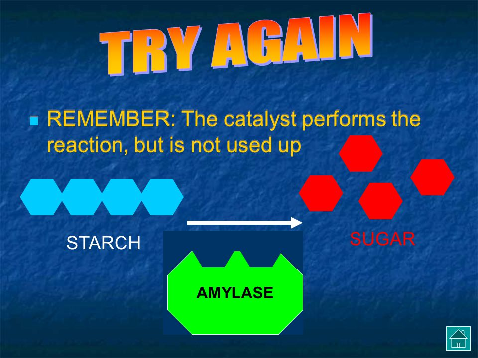 TRY AGAIN REMEMBER: The catalyst performs the reaction, but is not used up SUGAR STARCH AMYLASE