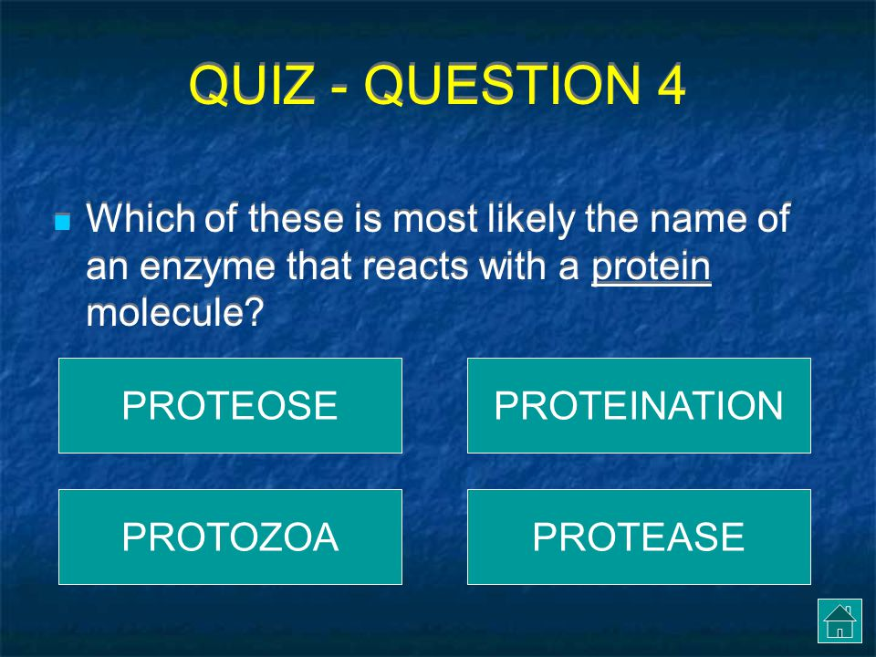 QUIZ - QUESTION 4 Which of these is most likely the name of an enzyme that reacts with a protein molecule