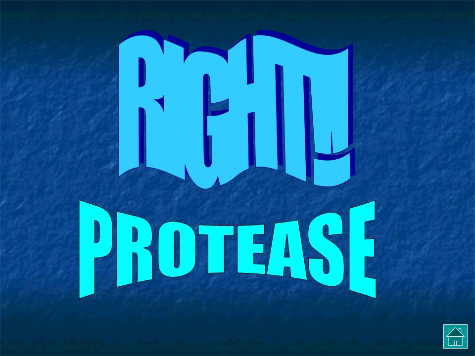 RIGHT!! PROTEASE
