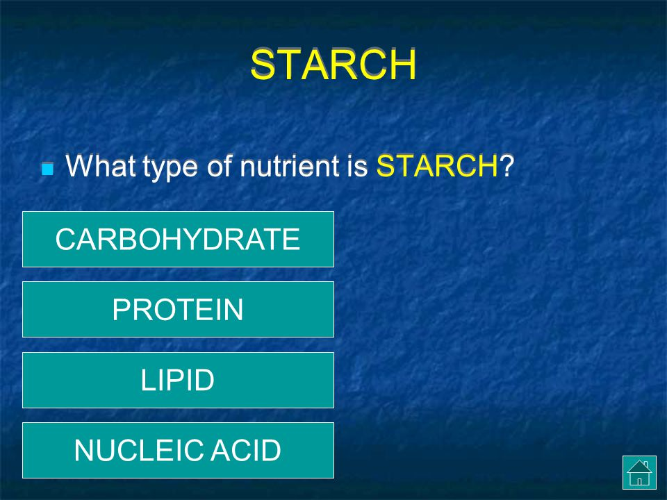 STARCH What type of nutrient is STARCH CARBOHYDRATE PROTEIN LIPID