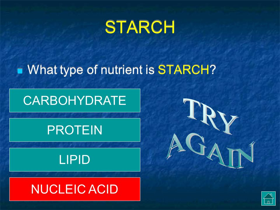 STARCH TRY AGAIN What type of nutrient is STARCH CARBOHYDRATE PROTEIN