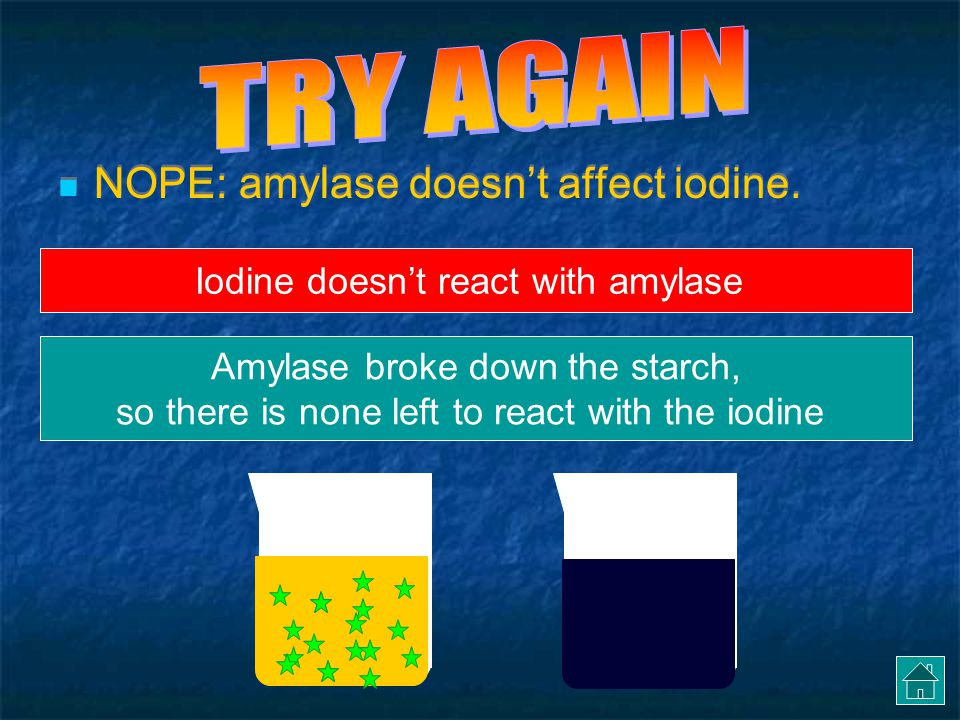 TRY AGAIN NOPE: amylase doesn't affect iodine.