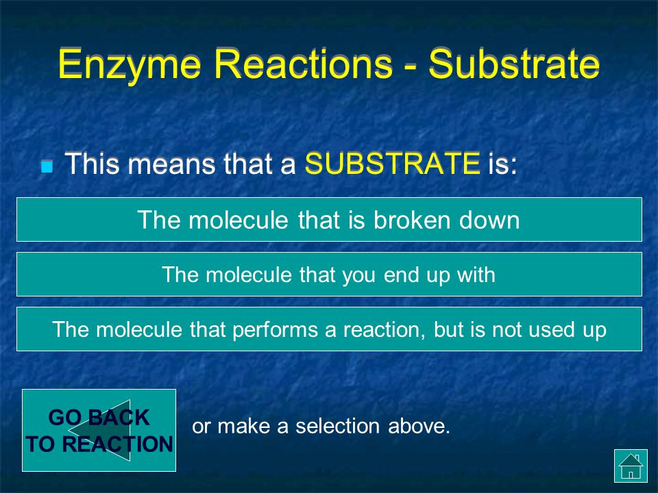 Enzyme Reactions - Substrate
