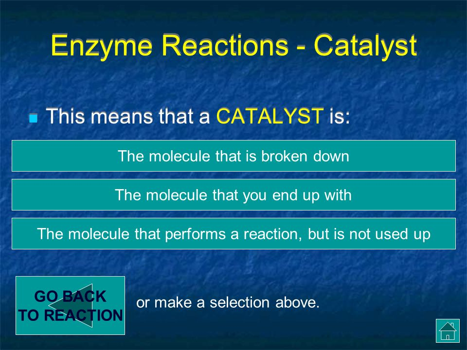 Enzyme Reactions - Catalyst