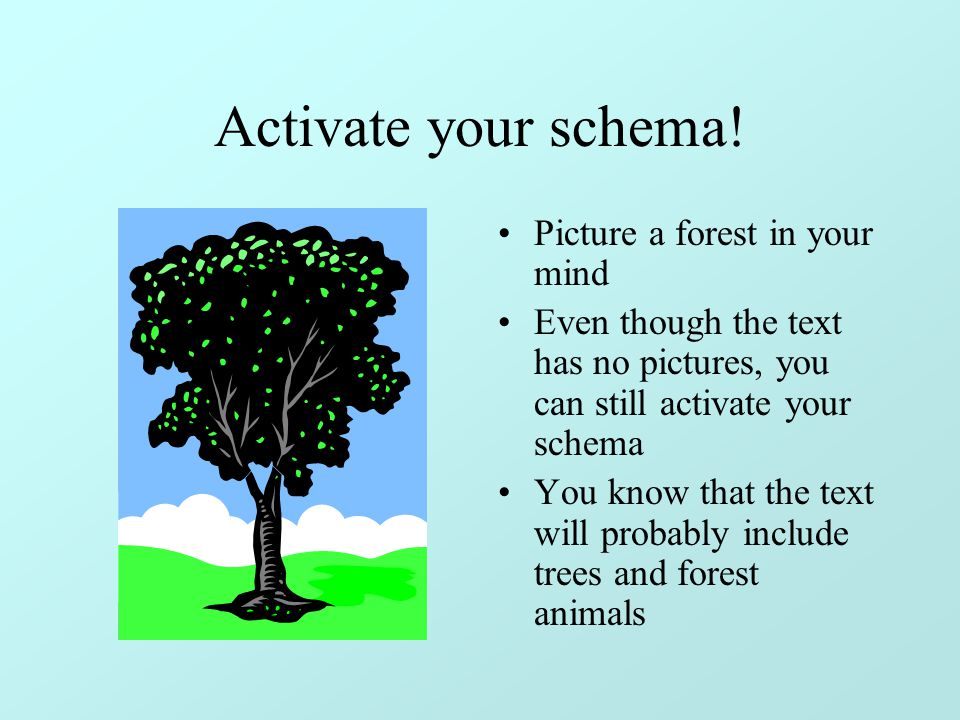 Activate your schema! Picture a forest in your mind
