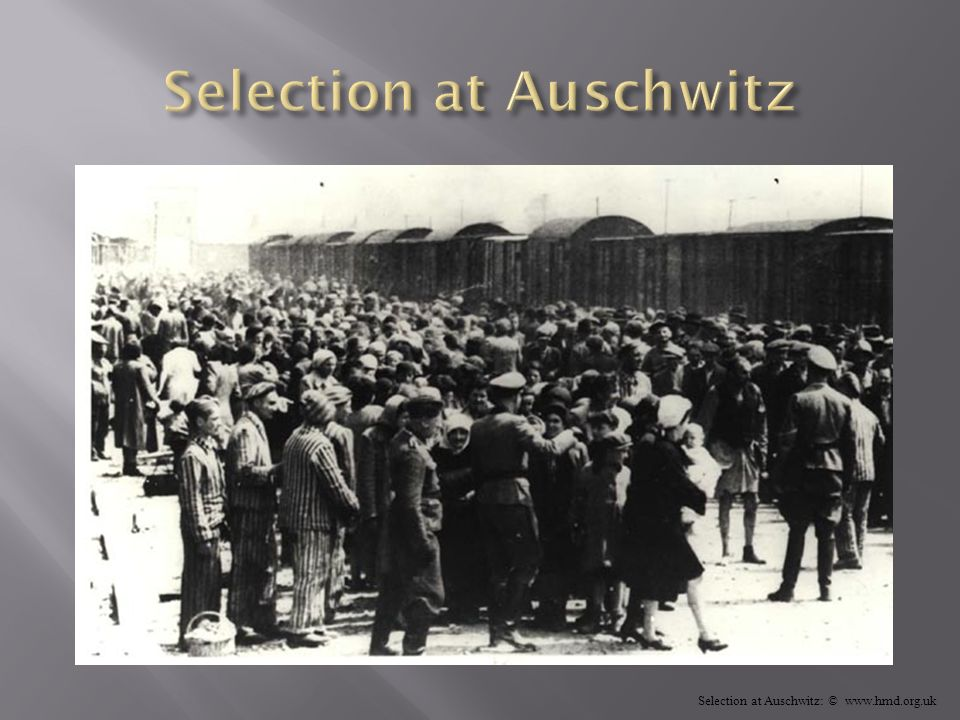Selection at Auschwitz