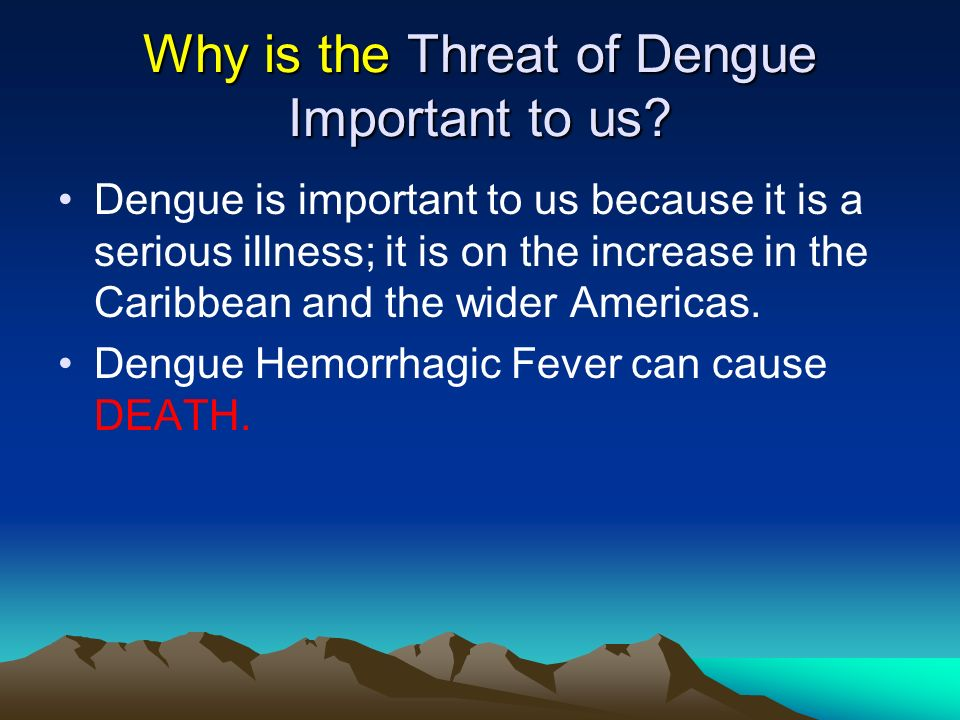 Why is the Threat of Dengue Important to us