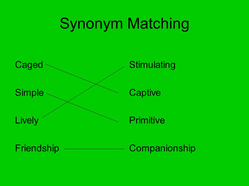 Synonym Matching Caged Simple Lively Friendship Stimulating Captive