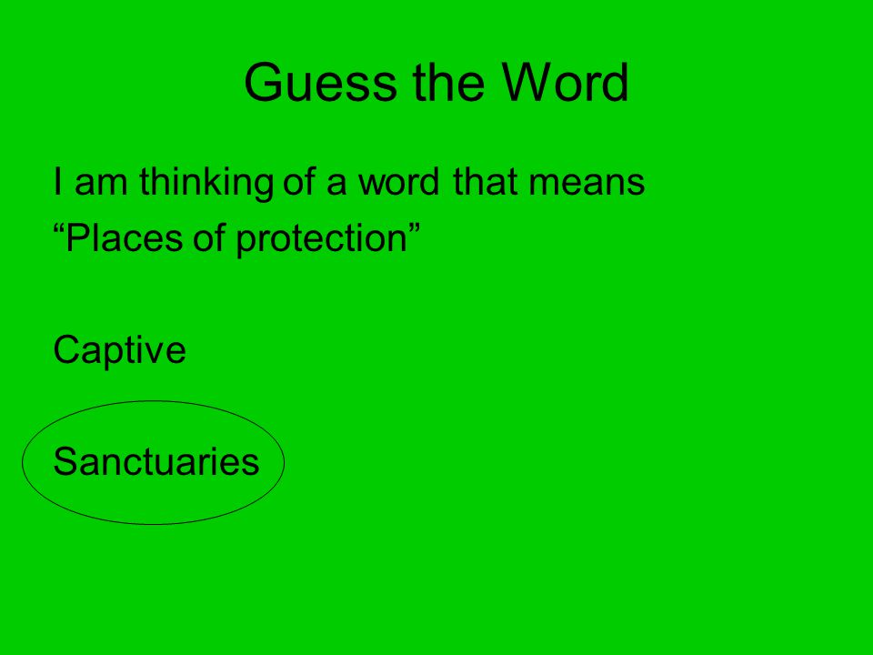 Guess the Word I am thinking of a word that means