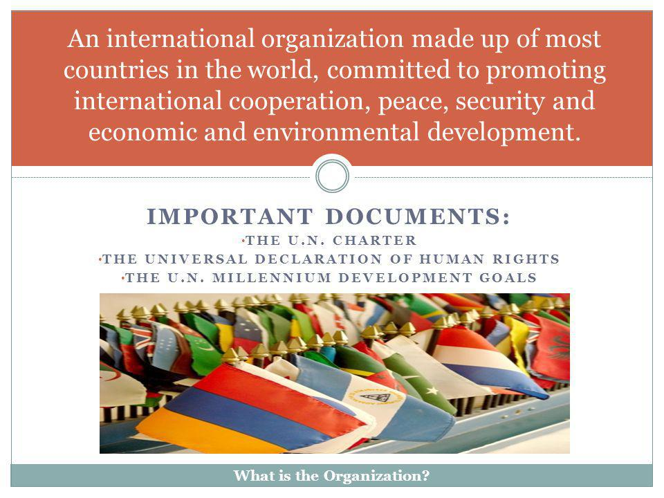 An international organization made up of most countries in the world, committed to promoting international cooperation, peace, security and economic and environmental development.