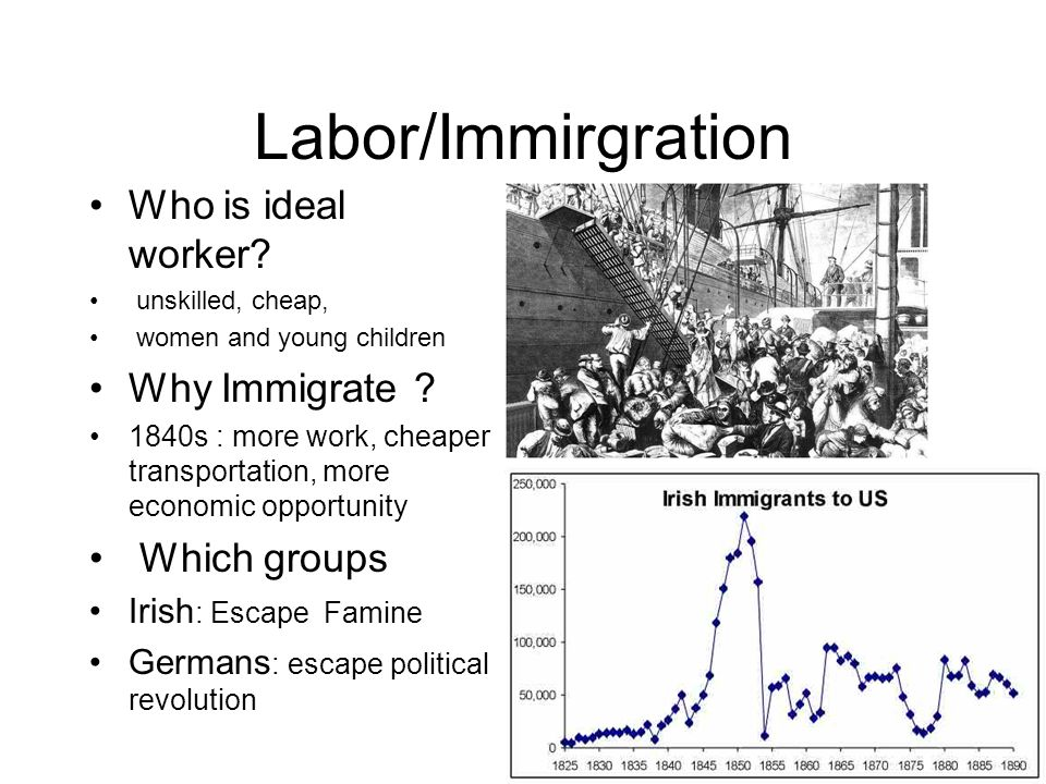 Labor/Immirgration Who is ideal worker Why Immigrate Which groups