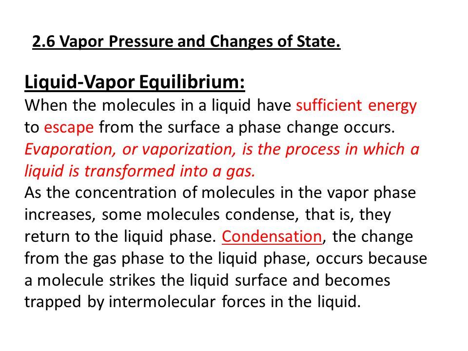 Liquid-Vapor Equilibrium:
