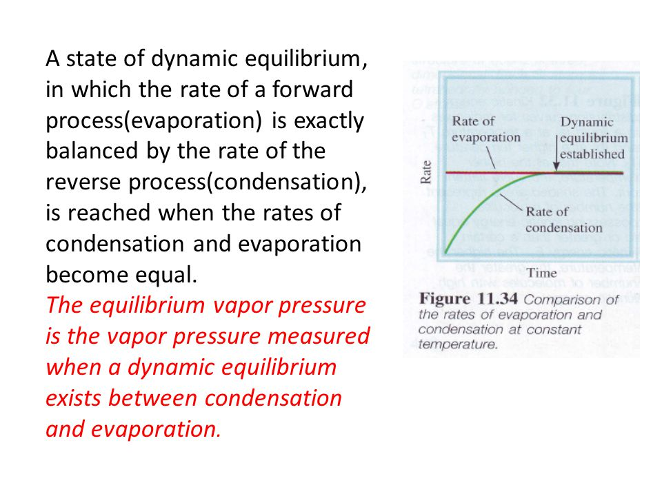 A state of dynamic equilibrium, in which the rate of a forward process(evaporation) is exactly balanced by the rate of the reverse process(condensation), is reached when the rates of condensation and evaporation become equal.