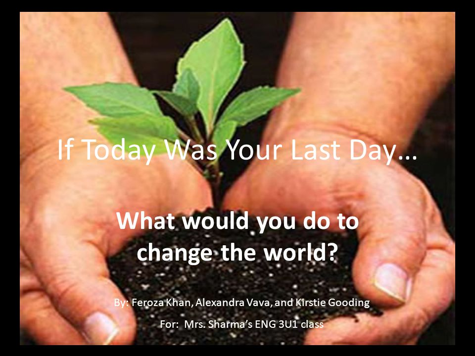 What would you do to change the world