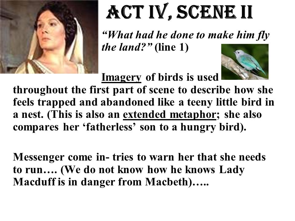 Act Iv, Scene ii What had he done to make him fly the land (line the land (line 1)
