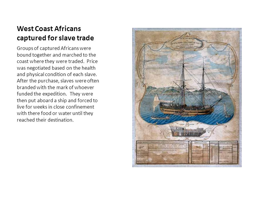 West Coast Africans captured for slave trade