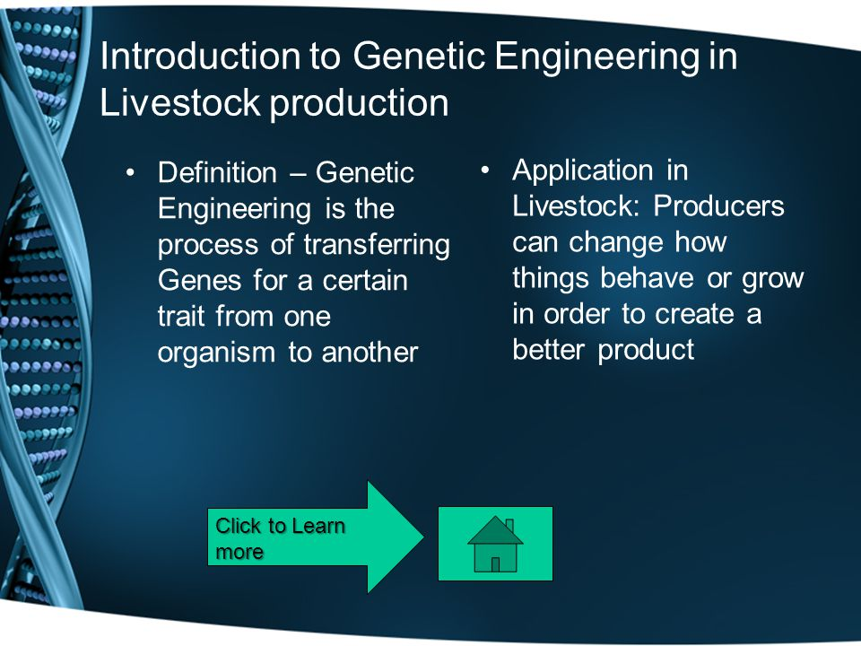 Introduction to Genetic Engineering in Livestock production