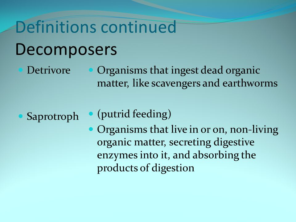 Definitions continued Decomposers