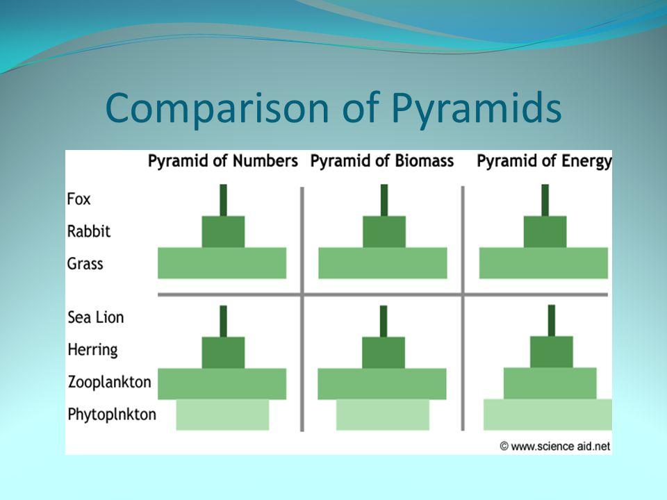 Comparison of Pyramids
