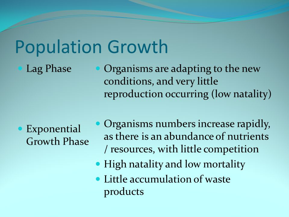 Population Growth Lag Phase Exponential Growth Phase