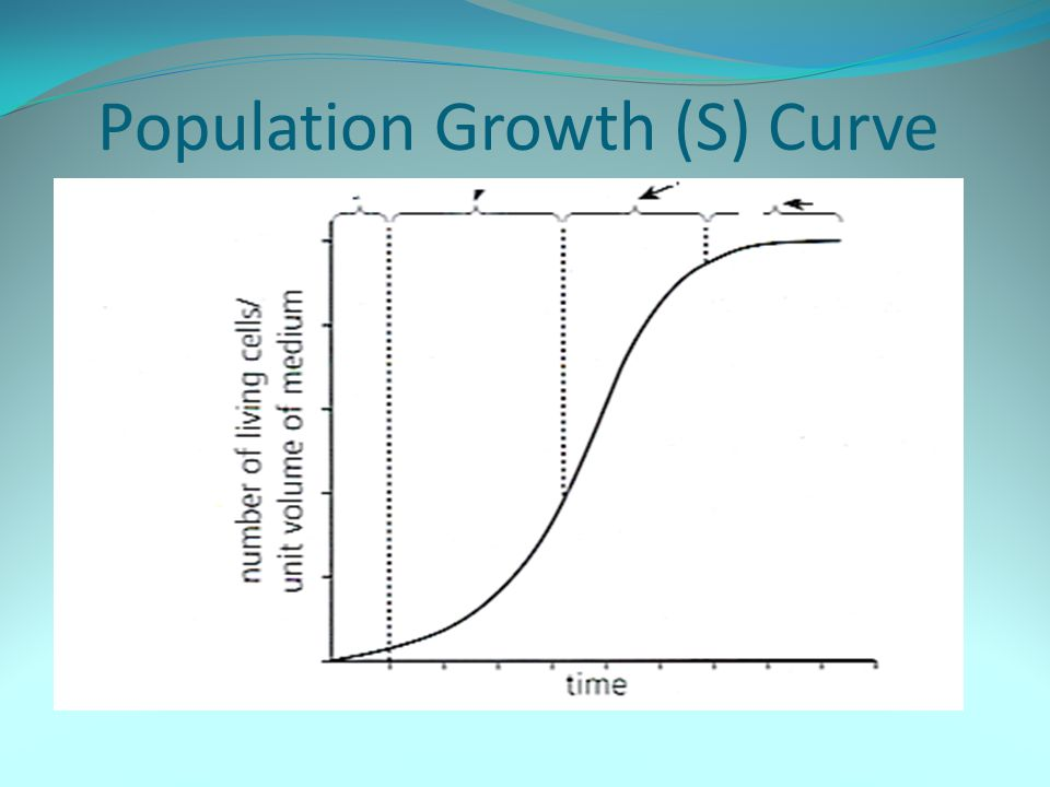 Population Growth (S) Curve