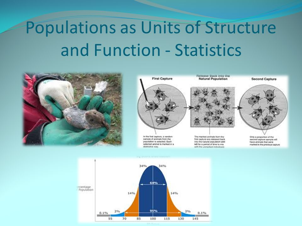 Populations as Units of Structure and Function - Statistics