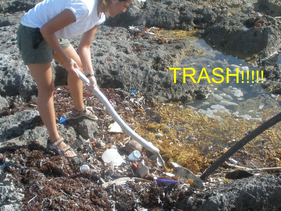 TRASH!!!!!