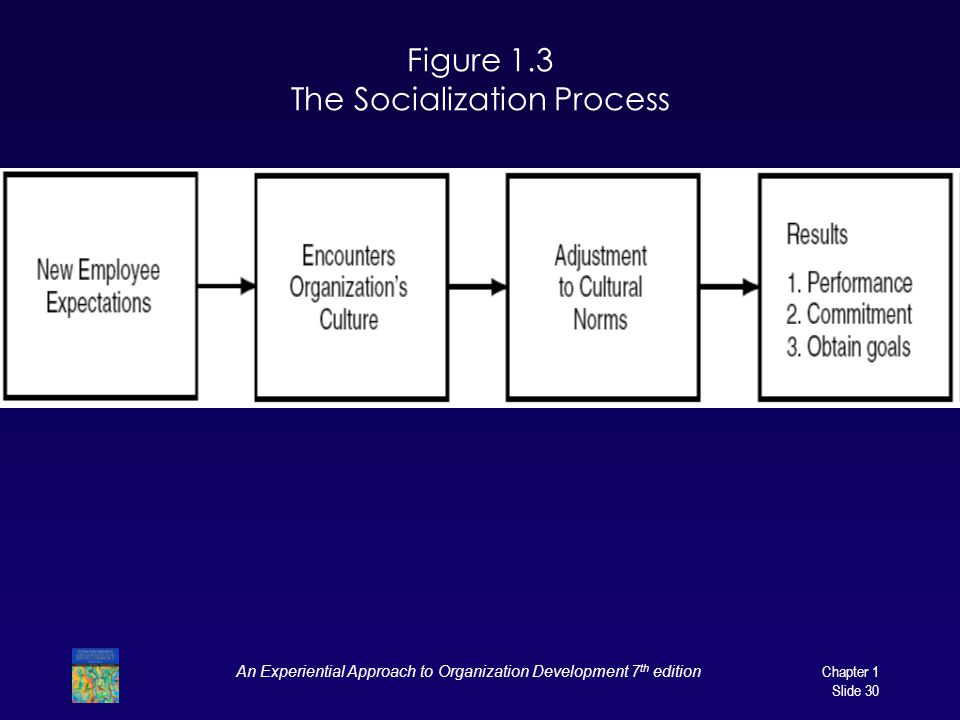 Figure 1.3 The Socialization Process
