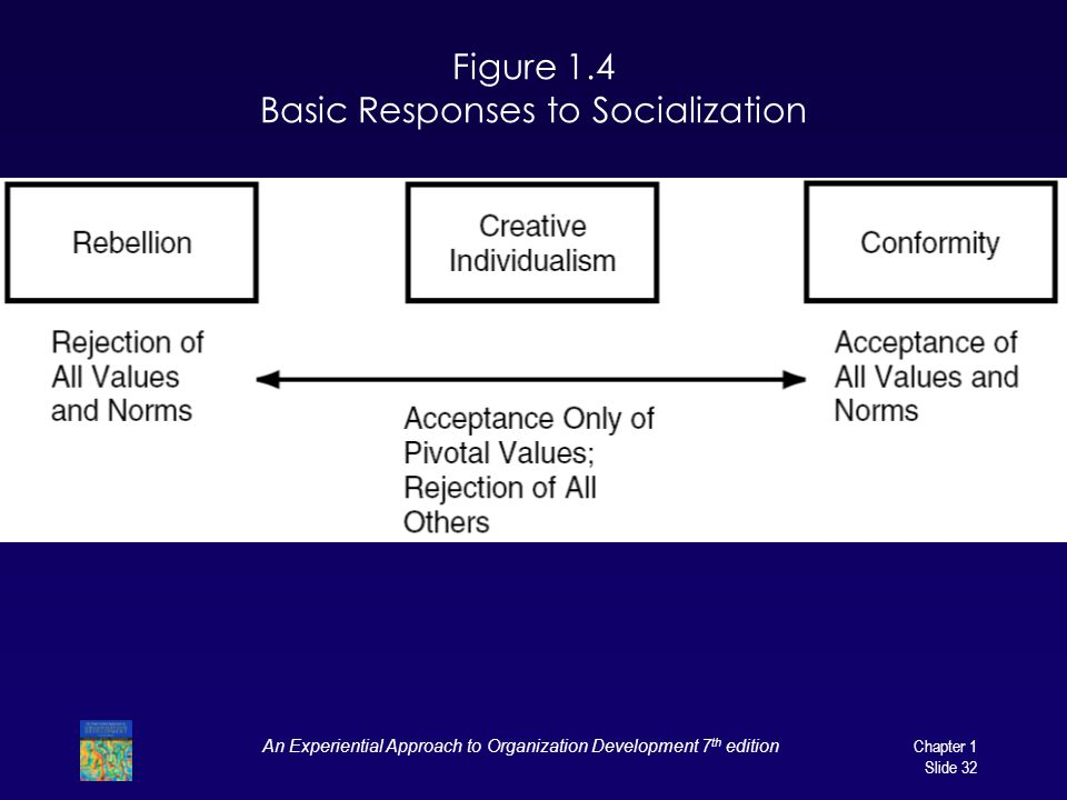 Figure 1.4 Basic Responses to Socialization