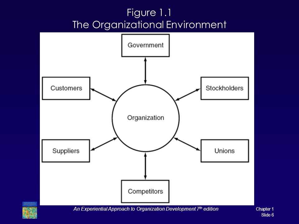 Figure 1.1 The Organizational Environment