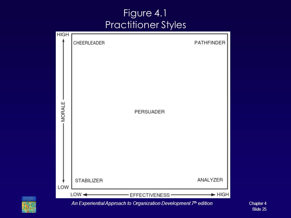 Figure 4.1 Practitioner Styles