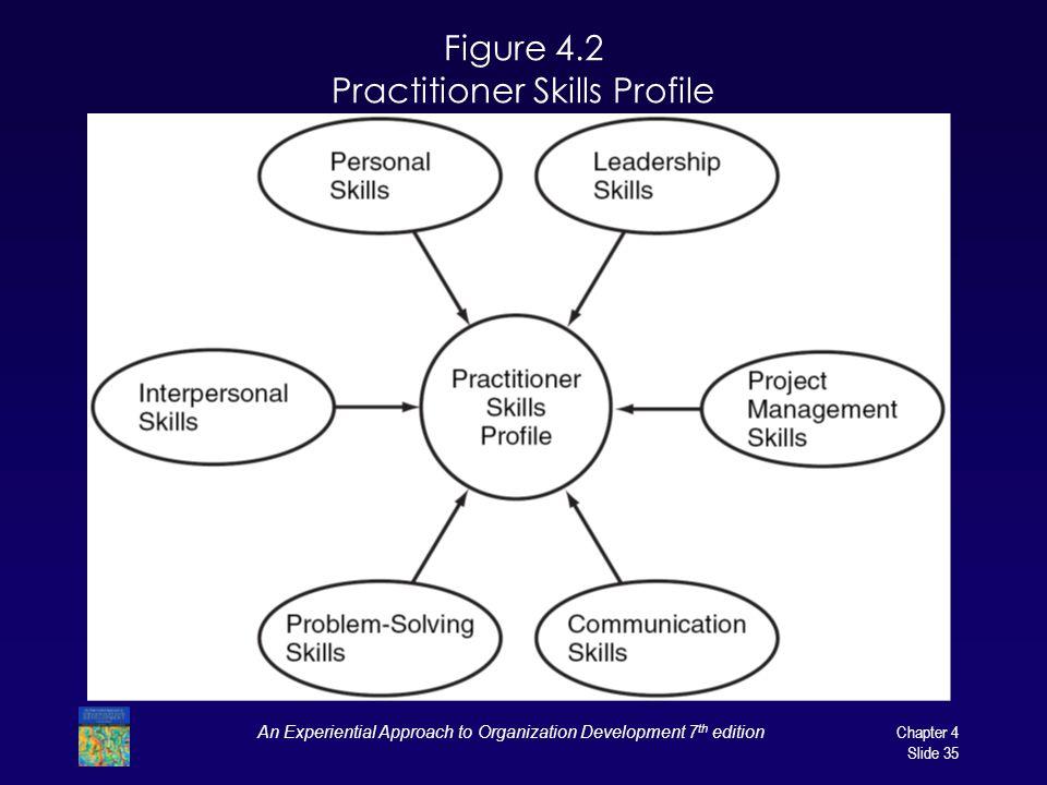 Figure 4.2 Practitioner Skills Profile