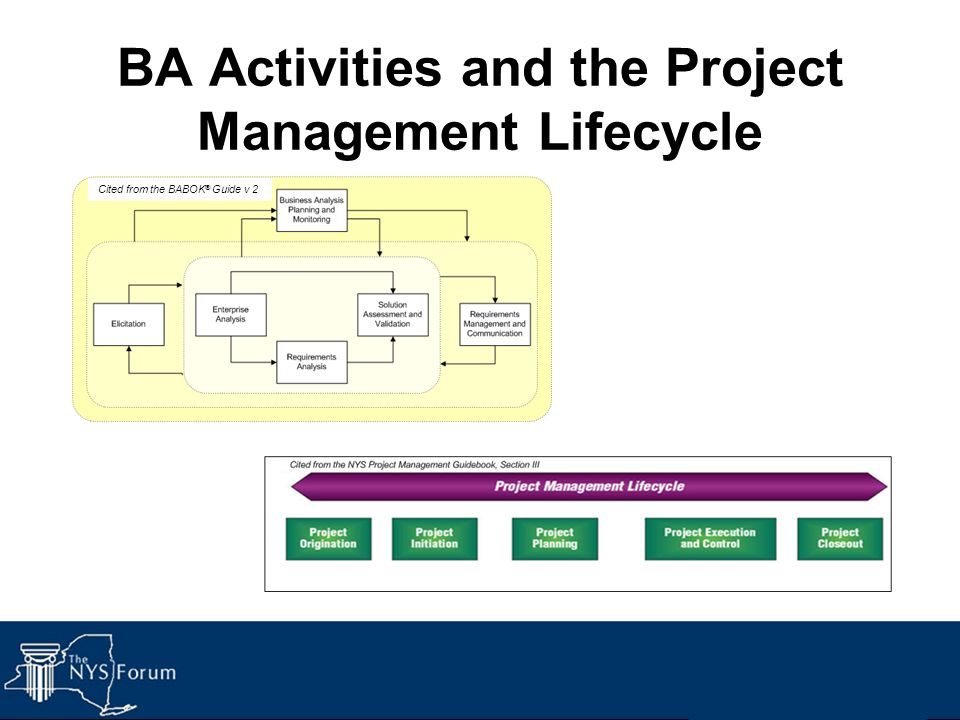 BA Activities and the Project Management Lifecycle