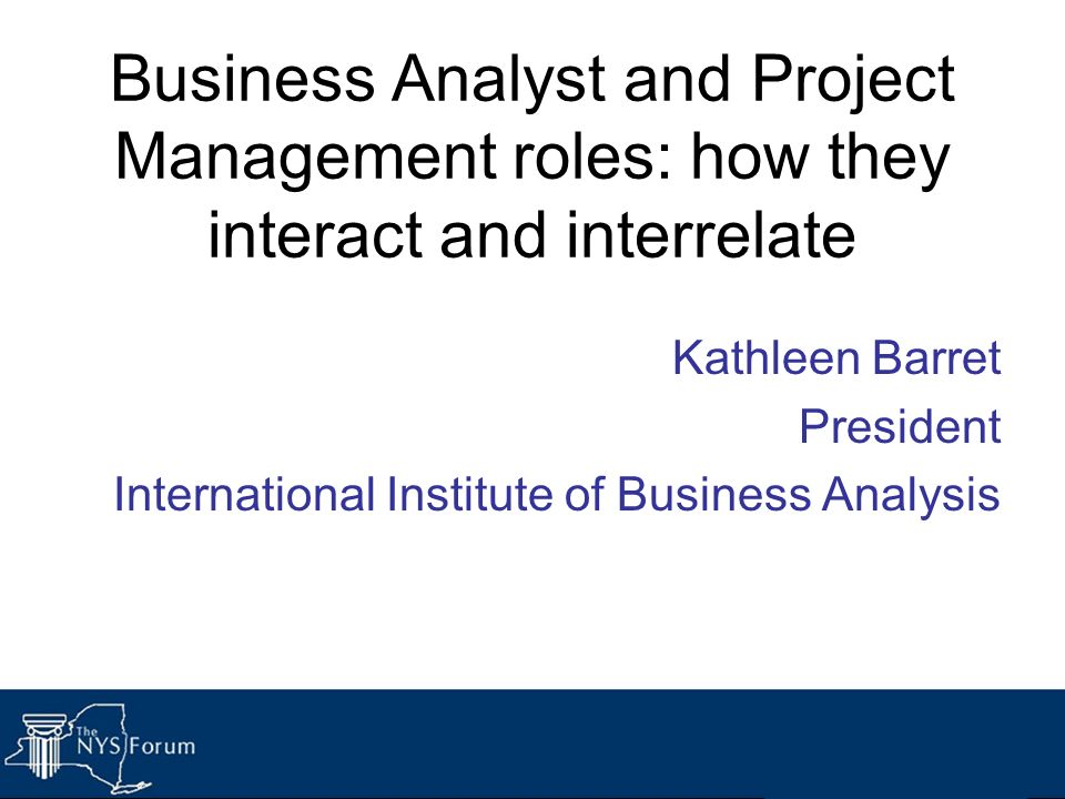 Business Analyst and Project Management roles: how they interact and interrelate