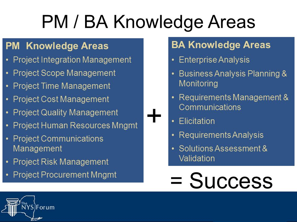+ = Success PM / BA Knowledge Areas BA Knowledge Areas