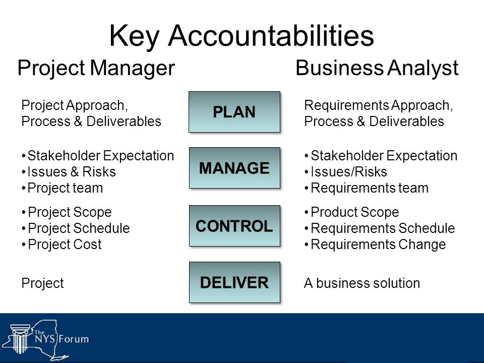 Key Accountabilities Project Manager Business Analyst PLAN MANAGE