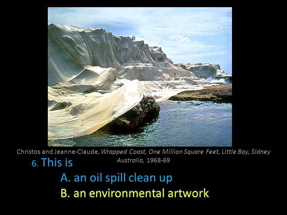 B. an environmental artwork B. an environmental artwork