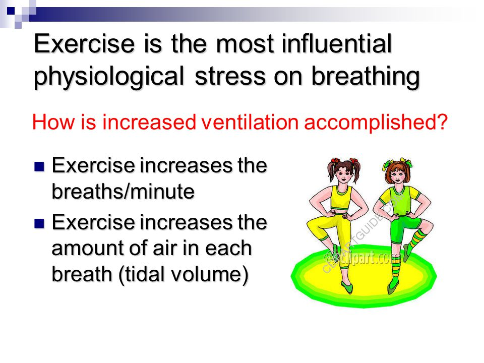 Exercise is the most influential physiological stress on breathing
