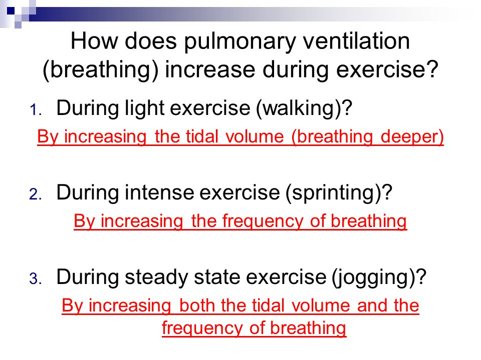 How does pulmonary ventilation (breathing) increase during exercise