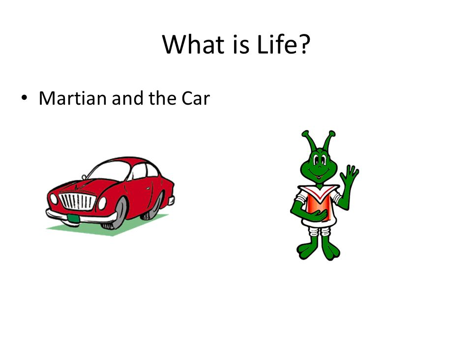 What is Life Martian and the Car