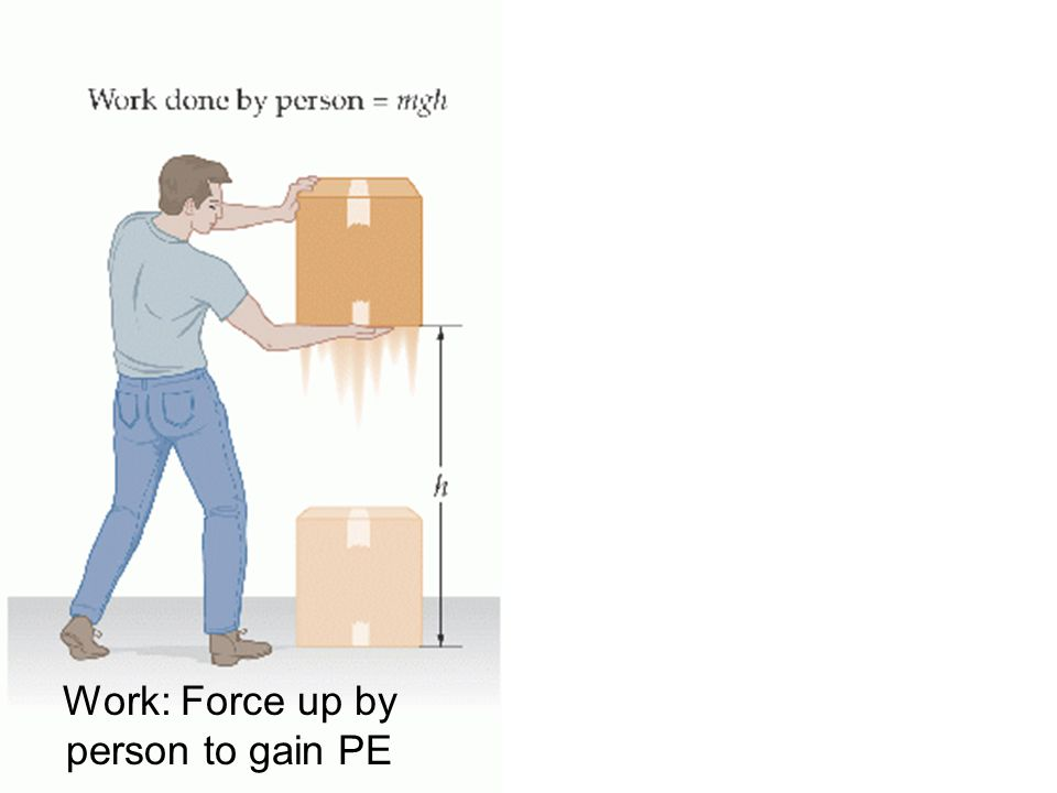 Work: Force up by person to gain PE
