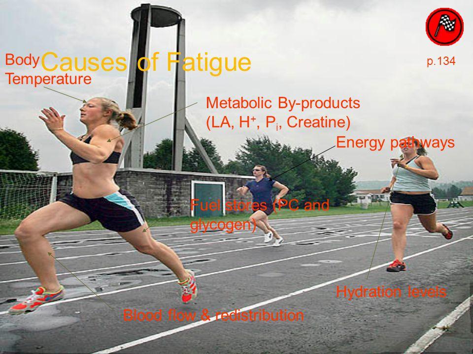 Causes of Fatigue Body Temperature