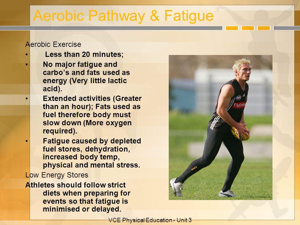 Aerobic Pathway & Fatigue