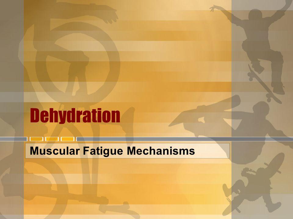 Muscular Fatigue Mechanisms