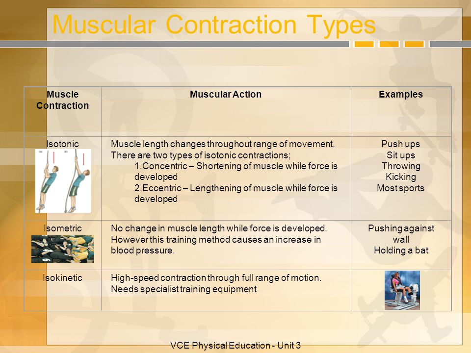 Muscular Contraction Types