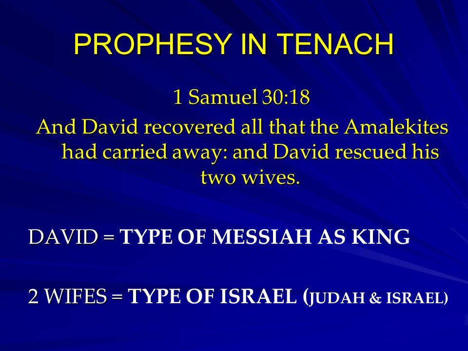 PROPHESY IN TENACH 1 Samuel 30:18