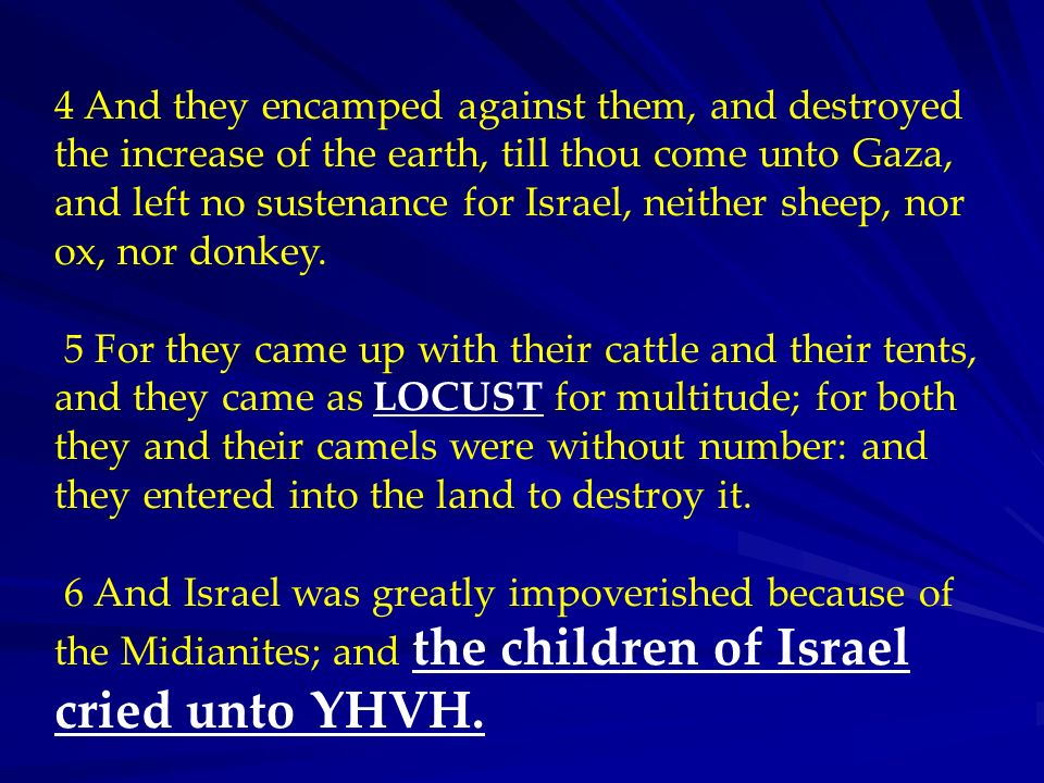4 And they encamped against them, and destroyed the increase of the earth, till thou come unto Gaza, and left no sustenance for Israel, neither sheep, nor ox, nor donkey.