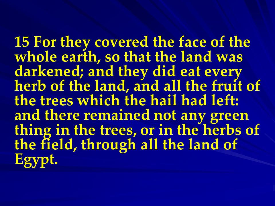 15 For they covered the face of the whole earth, so that the land was darkened; and they did eat every herb of the land, and all the fruit of the trees which the hail had left: and there remained not any green thing in the trees, or in the herbs of the field, through all the land of Egypt.