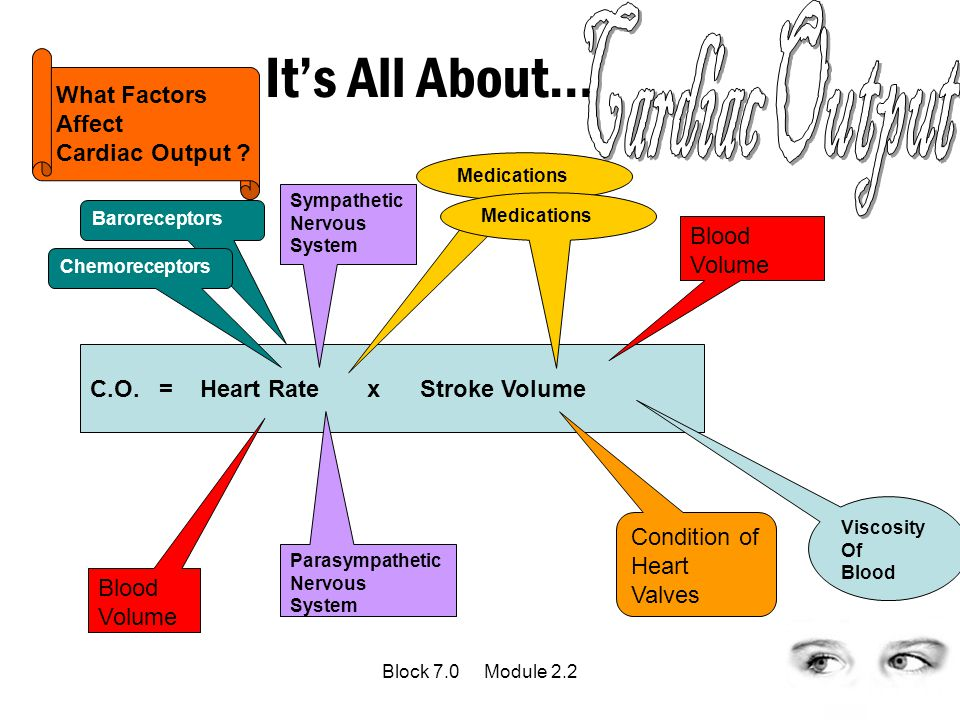 Cardiac Output It's All About… Cardiac Output = HR X SV What Factors